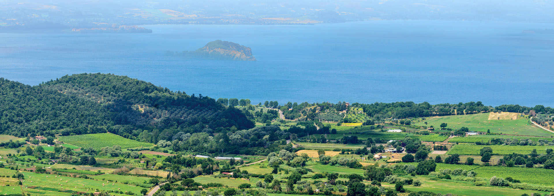 The Yellow Pearls of Lake Bolsena