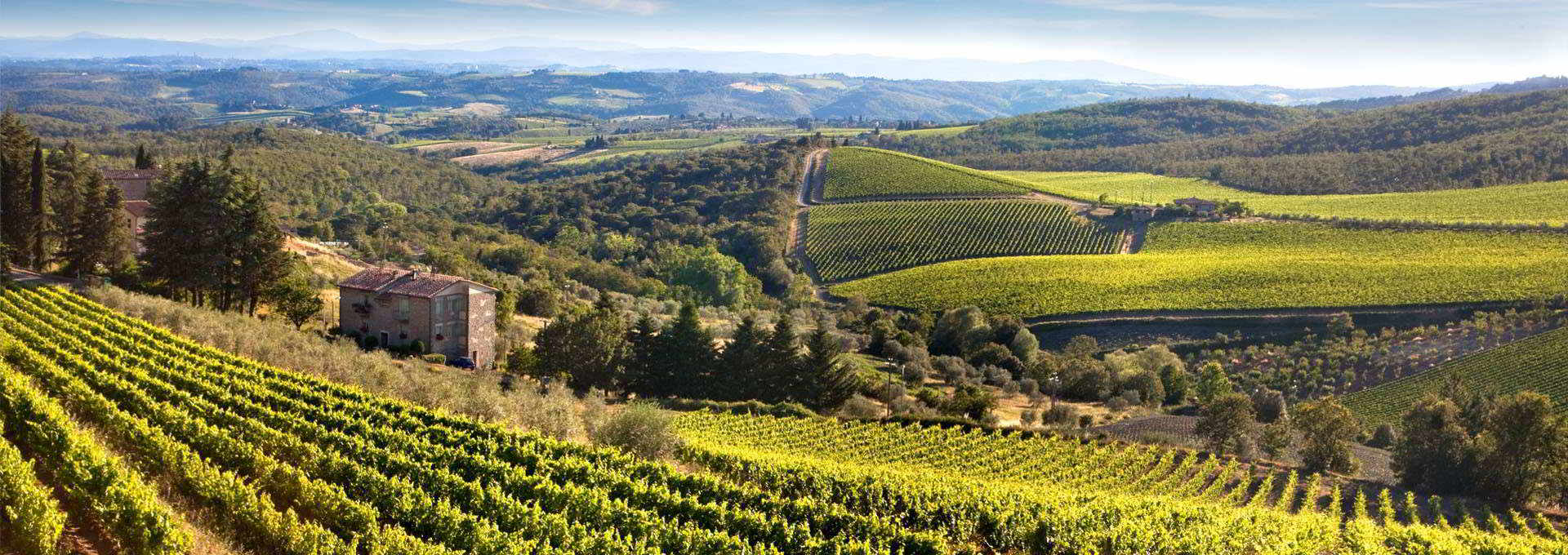 Tuscany: The Future Lies in The Historical Local Vineyards.