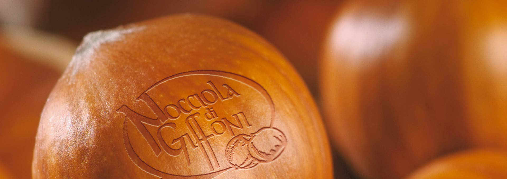 The Giffoni Hazelnut, the quintessence of flavour