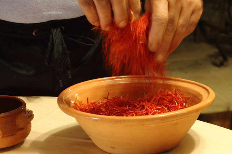 "The denomination ""Zafferano Italiano"" (""Italian Saffron"") is reserved to the saffron obtained from the stigma of the flower Crocus sativus L., which has 3 stigma of a length ranging from 1 to 3.5 cm, with large, cylindrical, violet-red and orange-red papilla."