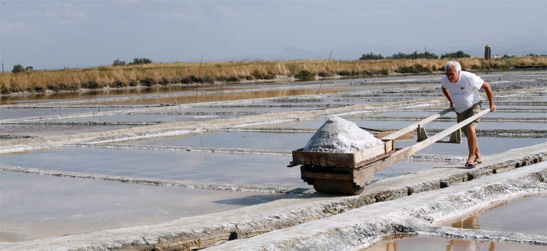 The Sweet Salt of Cervia