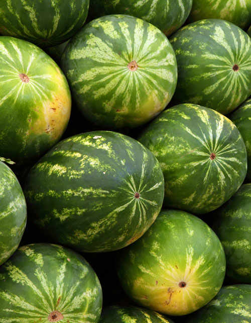 Watermelon,  a juicy summer fruit.