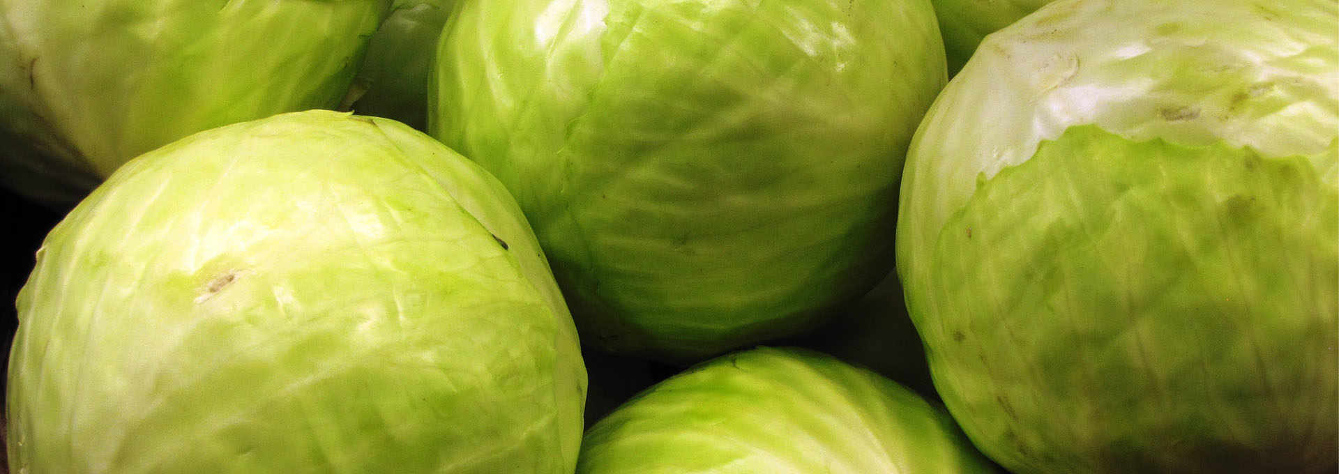 Cabbage and Turnip: Healthy, Nutritious and Delicious