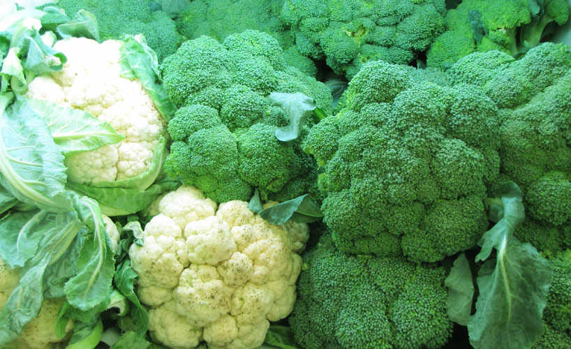 Cauliflowers and broccoli.
