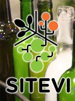 Enrolment to the SITEVI in Montpellier opens